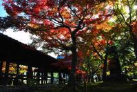 東福寺DSC_0759