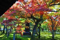 東福寺DSC_0766
