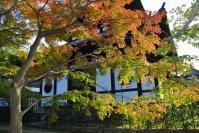 東福寺DSC_0797