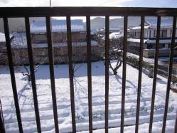雪景色2011
