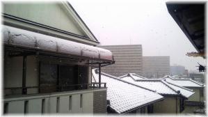 大阪の2月の雪