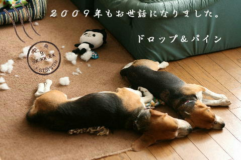 eos2009.12.12 005s