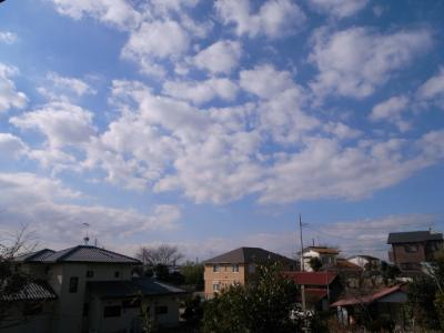 2010年1月16日空