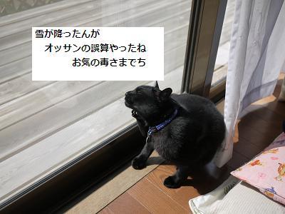 baka3.jpg