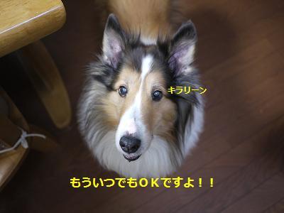 daidokoro2.jpg