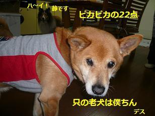 korori1.jpg