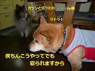 utouto1.jpg