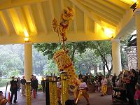 lion dance1(shou )