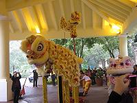 lion dance4(shou )