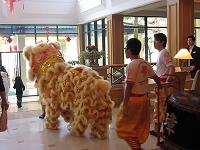 lion dance6(shou )