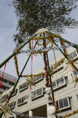 竹のツリー