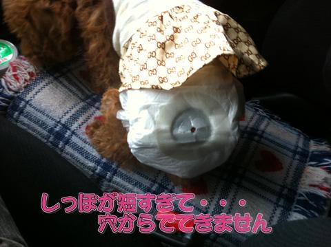 02_20110403224218.jpg