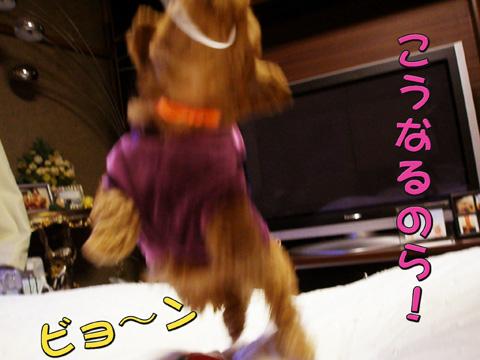 05_20110323233340.jpg