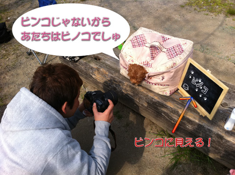 05_20110413012049.jpg