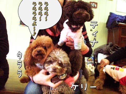 08_20110309001035.jpg
