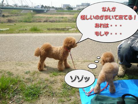 12_20110403224217.jpg