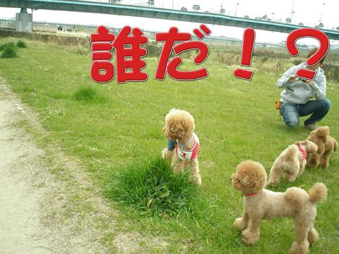 14_20110413012012.jpg