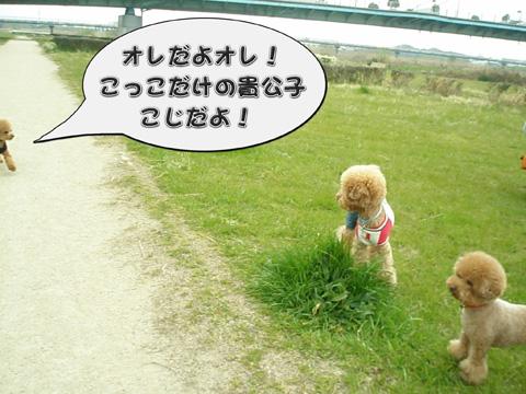 15_20110413012012.jpg