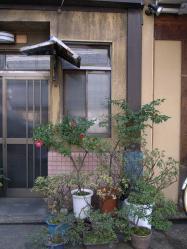 20120220kanda06.jpg