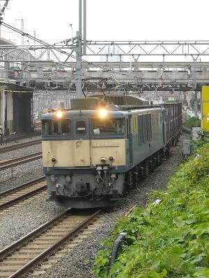 DSCN0064l.jpg