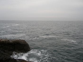 20110613地磯