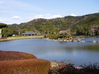 9 庭園全景
