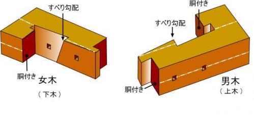 t0802p11.jpg