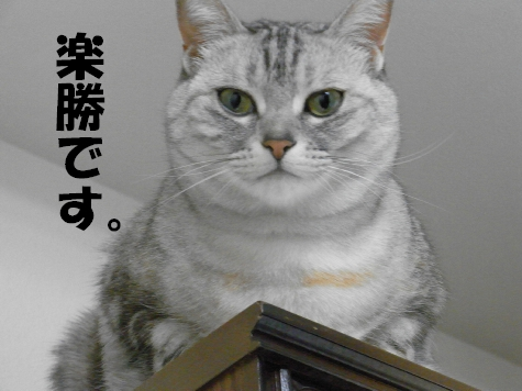 RIMG0757_20100720151211.jpg
