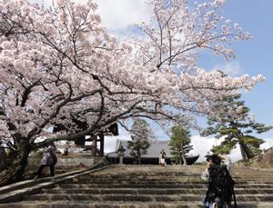 金戒光明寺blog02