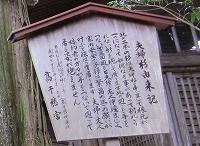 高千穂神社夫婦杉