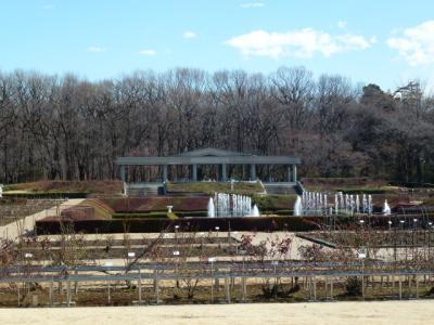 神代植物公園 バラ園