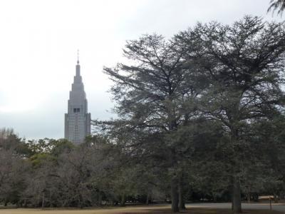 新宿御苑風景1