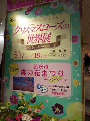 クリスマスローズの世界展 2012
