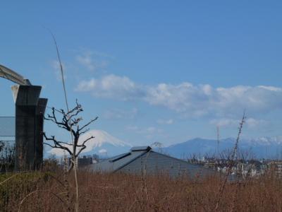 2・18庭園から富士山