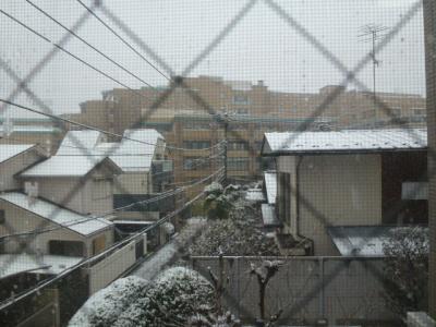 2・29雪