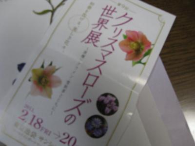 IMG_6899_convert_20110223222713.jpg