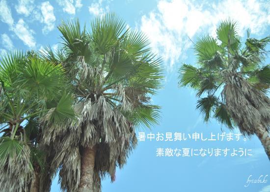 DSC_0806-1_convert_20110714223122.jpg