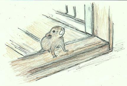 ネズミの大きさブログ