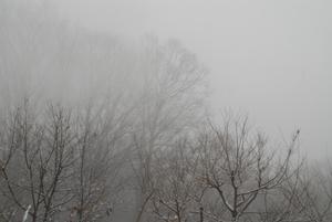雪のち霧16
