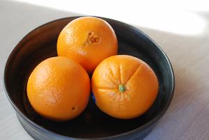 オレンジ17