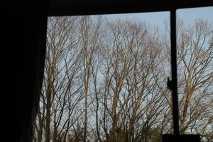 きのう夕方窓から8