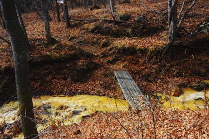 石尊山 登山 010 血の滝上方の橋