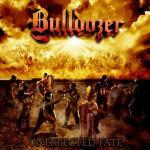 bulldozer5.jpg