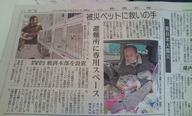 20110321 新潟日報朝刊記事
