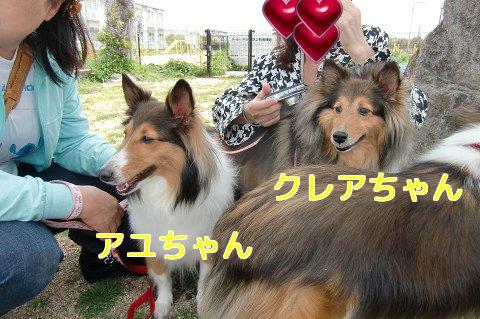 アユちゃん&クレアちゃん