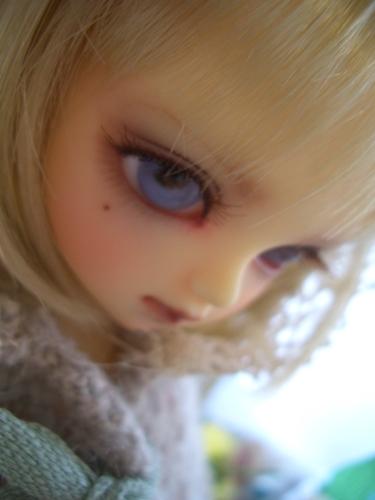 CIMG5432.jpg