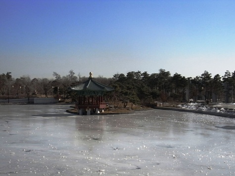ソウル国立中央博物館の凍池