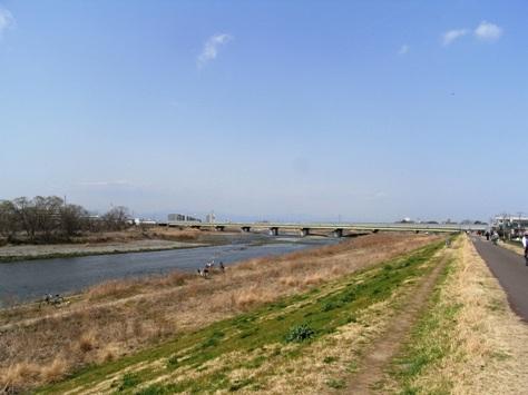 スタート地点付近 多摩川土手(国立市)