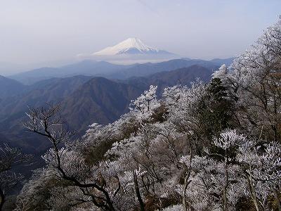 桧洞丸の霧氷 撮影 内藤幹雄氏