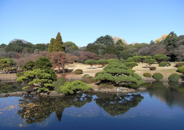 2010.12.11 新宿御苑 旧御凉亭からの風景